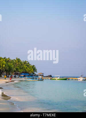 Early morning photograph of West Bay Roatan Honduras in portrait orientation. - Stock Image