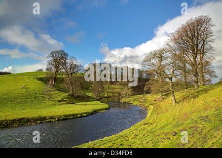 River at Dallam Park near Milnthorpe - Stock Image
