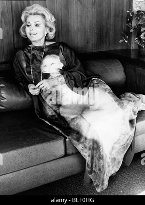 Actress and socialite Zsa Zsa Gabor with her dog in the 1970's. - Stock Image