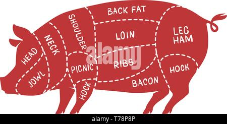 Cuts of meat, pig. Pork, butcher shop vector illustration - Stock Image