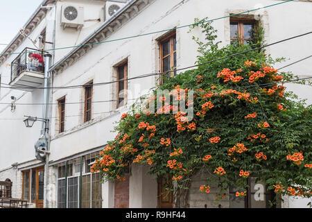 Gjirokasta Old town Albania - Stock Image