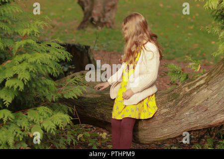 Girl sitting on a tree, in a park, in the autumn sunshine - Stock Image