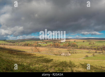 North Pennines AONB Panoramic Landscape, towards Ettersgill from Holwick, Upper Teesdale with autumn colours and strong sunshine - Stock Image