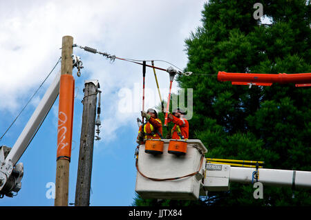 British Columbia Hydro electrical workers splicing electricity power cable on pole - Stock Image
