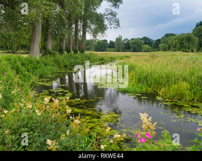 A view along a country section of the River Wensum in Norfolk. - Stock Image