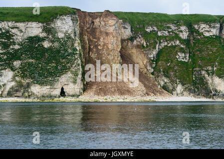 Cliff erosion coastal erosion south of Bempton Cliffs, UK. - Stock Image