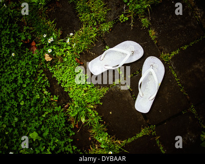 Jandals - Stock Image