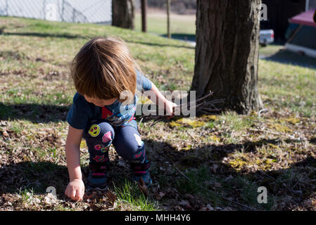 Three-year old girl picking up sticks in a yard on a warm summer day. - Stock Image