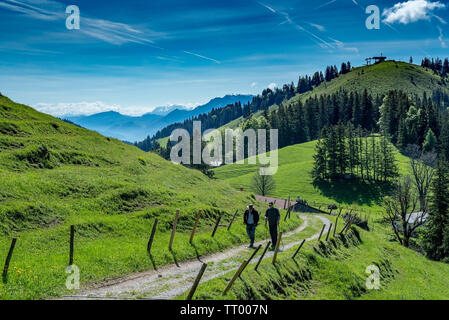 Bayrischzell, Bavaria, Germany - June 1, 2019.  Hikers enjoy a nice spring day on the beginning of the trail to Mount Wendelstein - Stock Image