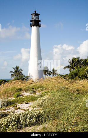 Cape Florida Light overlooking the Biscayne Channel amid a cascade of sea oats on a brilliant sunny morning in Florida. - Stock Image