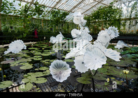 Ethereal white persian pond forms part of the contemporary glass artist Dale Chihuly's newest work, the Chihuly at Kew: Reflections on nature exhibition, at Kew Gardens, Surrey - Stock Image