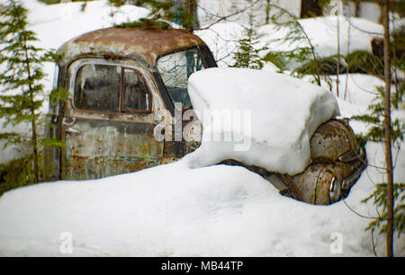 An old, 1950 Dodge pickup truck partially buried in deep snow, in a wooded area, behind a barn, in Noxon, Montana, USA.  This image was shot with an a - Stock Image