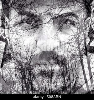 Multiple exposure man and trees - Stock Image