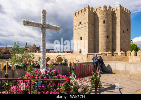 Calahorra Tower, at South end of Roman Bridge with a Cross of May in the foreground; Cordoba, Andalucia, Spain - Stock Image