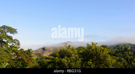 Scenic panorama of World Heritage Site Daintree National Park with low clouds over the tropical rainforest, Wet Tropics, Far North Queensland, FNQ, QL - Stock Image