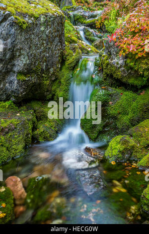 Small waterfall and mossy rocks - Stock Image