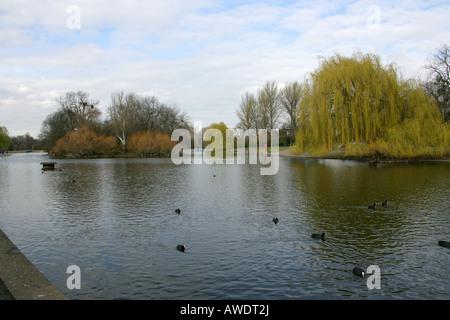 The Boating Lake Regents Park London - Stock Image