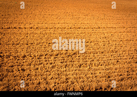 The beauty of the clay in a baseball field. - Stock Image