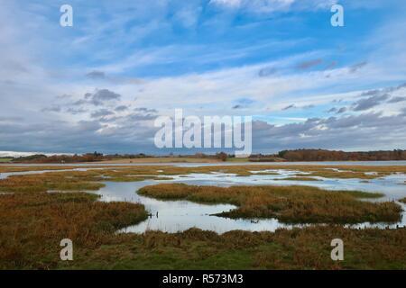 Salt marsh wetlands at high tide on the River Deben, Waldringfield, Suffolk, UK. Winter - November 2018. - Stock Image