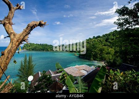 Jamaica Port Antonio Tropical landscape near blue lagoon - Stock Image