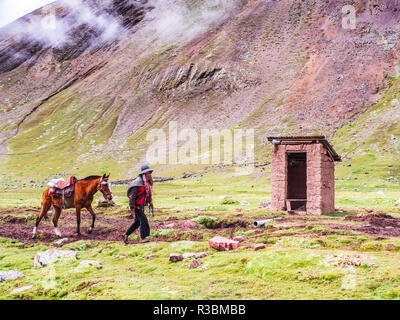 Vinicunca, Peru - January 7, 2017. View of a man carrying a horse used for tourist transportation in the Vinicunca mountain. - Stock Image