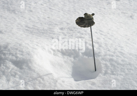 small birdbath on snow background - Stock Image