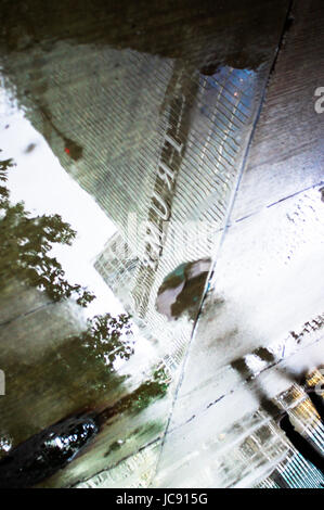 Chicago, United States. 14th Jun,  2017. Trump tower reflected in the rain puddle as the Chicago Storm battles on. - Stock Image