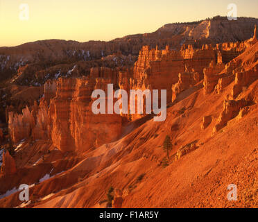 Bryce Canyon National Park - Stock Image