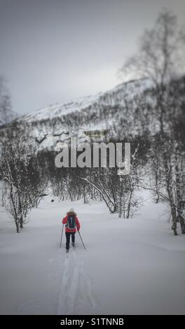 Cross country skier - Stock Image