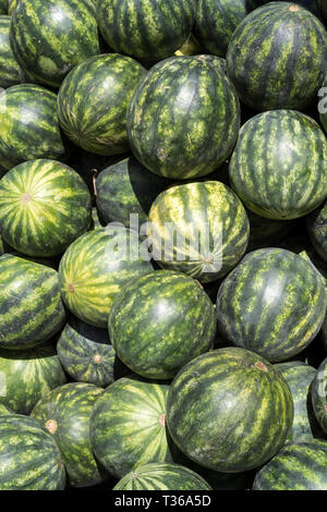 Freshly picked watermelons on display for sale on market stall at the old street market - Mercado -  in Ortigia, Syracuse, Sicily - Stock Image