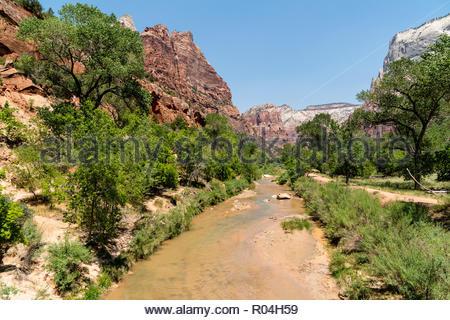 Zion National Park, Springdale, Utah, USA - Stock Image