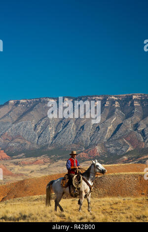 USA, Wyoming, Shell, Cowboy on Horse with Big Horn Mountains in Backdrop (MR) - Stock Image