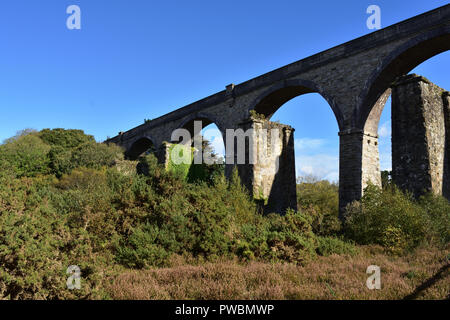 Carnon Viaduct - Stock Image