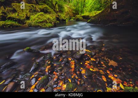 river Kamenice in autumn with long exposure, Bohemian Switzerland, Czech Republic - Stock Image