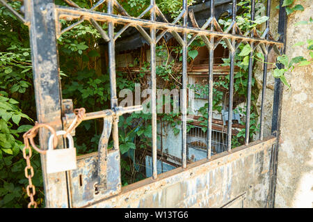 Neglected patio with old birdcages and overrun by vegetation behind a metal gate wtih a padlock in Gistaín (Chistau valley, Huesca, Aragon, Spain) - Stock Image