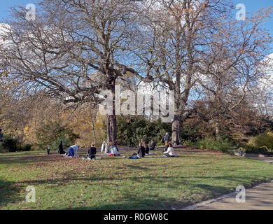 Young women in relaxation class on yoga mats in Ørstedsparken, Ørsted's Park, a public park in central Copenhagen on a sunny autumn day - Stock Image