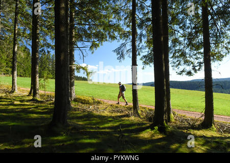 hiker walking in the eastern black forest,Baden-Wurttemberg, Germany, Europe - Stock Image