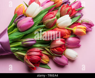 Colorful bouquet of tulips on white background. Spring background. - Stock Image