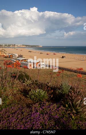 Portugal, Algarve, Praia Da Rocha, Beach & Flowers - Stock Image