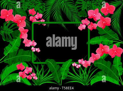 Green tropical leaves of banana, coconut, monstera and ogawa, Pink orchid. On a black background. illustration - Stock Image
