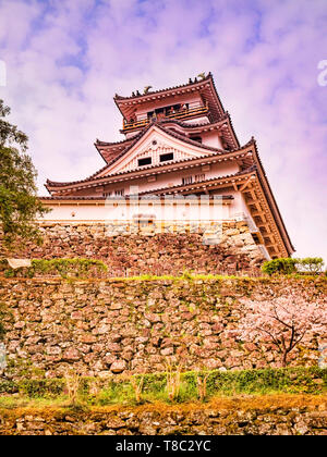 the main keep of Kochi Castle, Japan, with cherry blossom. - Stock Image