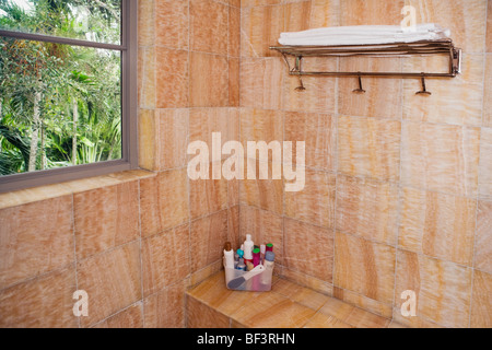 Toiletries in the bathroom - Stock Image