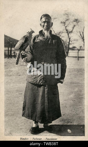 Chinese falconer with a Goshawk     Date: circa 1920s - Stock Image