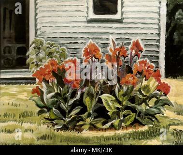 Cannas and Studio - Stock Image