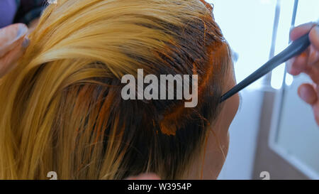 Professional hairdresser coloring hair of woman client at studio - Stock Image