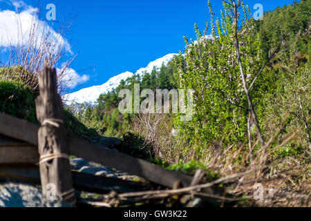 Sunny Day Mountains Nature Morning Under Hill Viewpoint.Mountain Trekking Landscape. Nobody photo. Horizontal picture. - Stock Image
