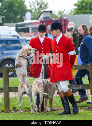 Ardingly Sussex UK 6th June 2019 - Hounds and the huntsmen enjoy a chat on the first day of the South of England Show held at the Ardingly Showground in Sussex. The annual agricultural show highlights the best in British farming and produce and attracts thousands of visitors over three days . Credit : Simon Dack / Alamy Live News - Stock Image