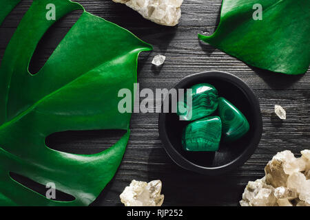 Malachite with Smoky Quartz and Monstera on Black Wood - Stock Image