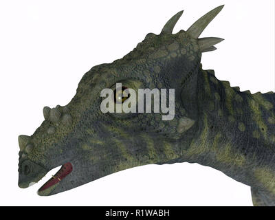 Dracorex was a herbivorous biped dinosaur that lived in North America during the Cretaceous Period. - Stock Image