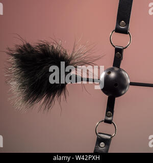Feathered and ball gag fetish equipment isolated on red background - Image - Stock Image